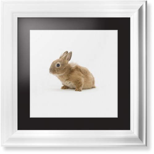Bunny Framed Print Multicolor