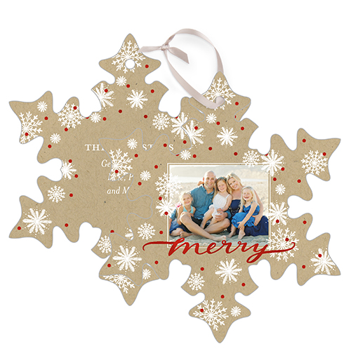 Merry Craft Metal Ornament, Beige, Snowflake