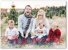 softly frosted christmas card