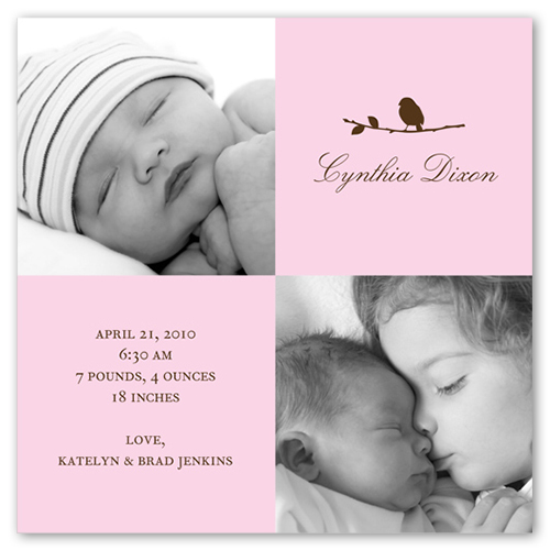 Little Bird Pink Birth Announcement