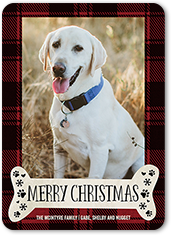 Pet holiday cards shutterfly holiday card from 127 pet greeting m4hsunfo