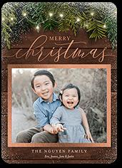 bokeh branches christmas card