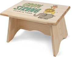 zoo safari step stool