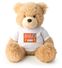 5495778a5ada big brother teddy bear