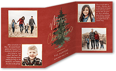 classic christmas fir christmas card