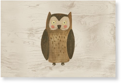 Owl Watercolor Wood Wall Art, Single piece, 24 x 36 inches, Multicolor